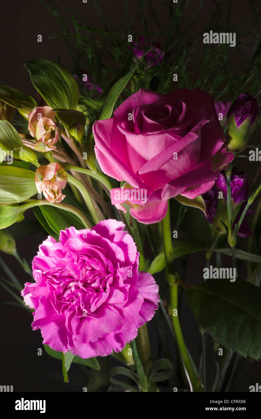Red rose and pink carnation together in a flower bouquet - Stock Image
