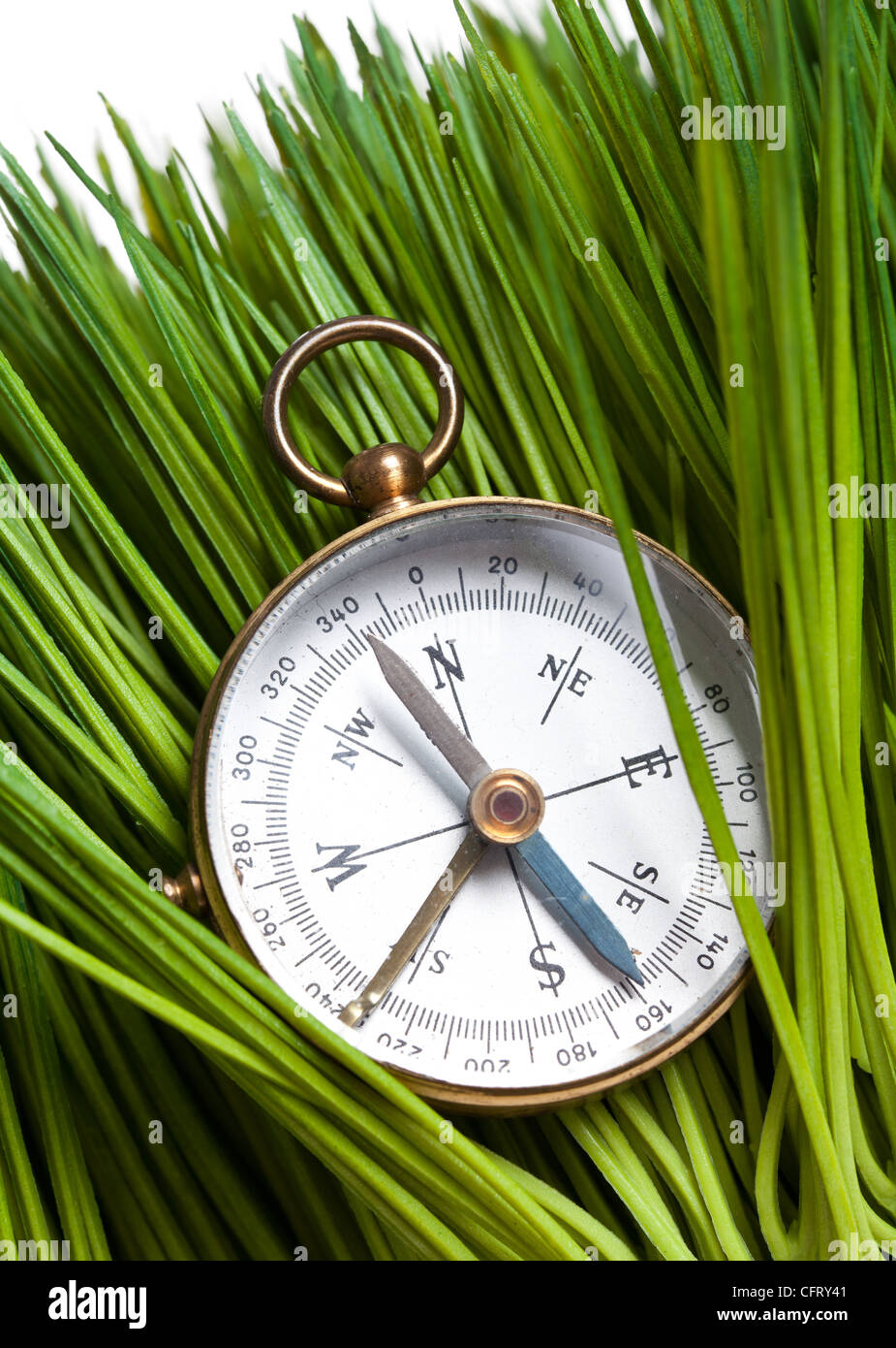Compass and Green Grass close up - Stock Image