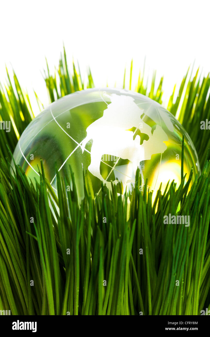 Globe and green grass, concept of Environmental Conservation - Stock Image