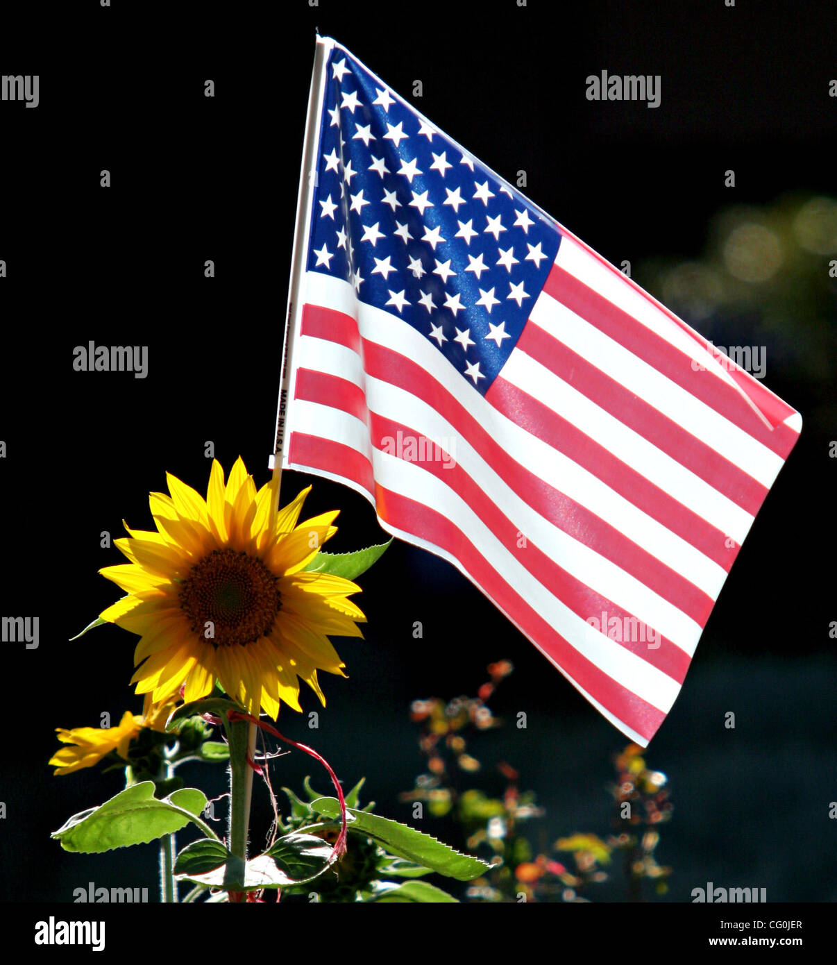 An American flag and sunflower are seen along Woodroe Avenue on Tuesday, July 3, 2007, in the unincorporated Fairview - Stock Image