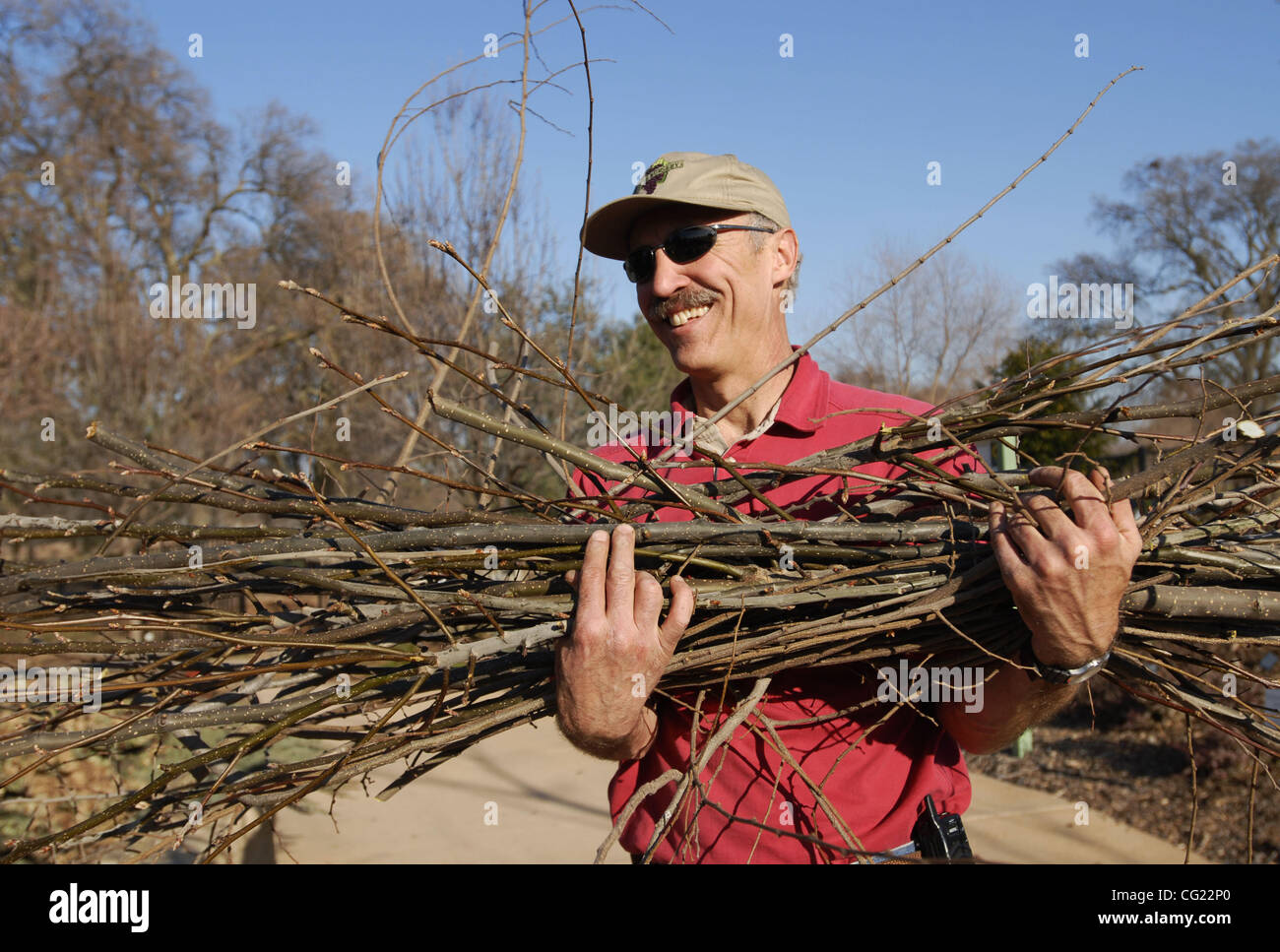 Chuck Ingels (cq) carries away his prunings at the Fair Oaks Horticulture Center, January 24, 2007.  Run by Master Stock Photo