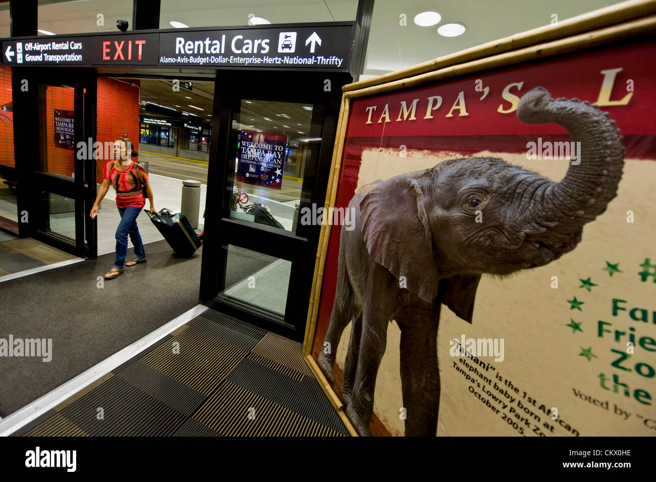 Tampa International Airport Tampa Fl Stock Photos & Tampa ...