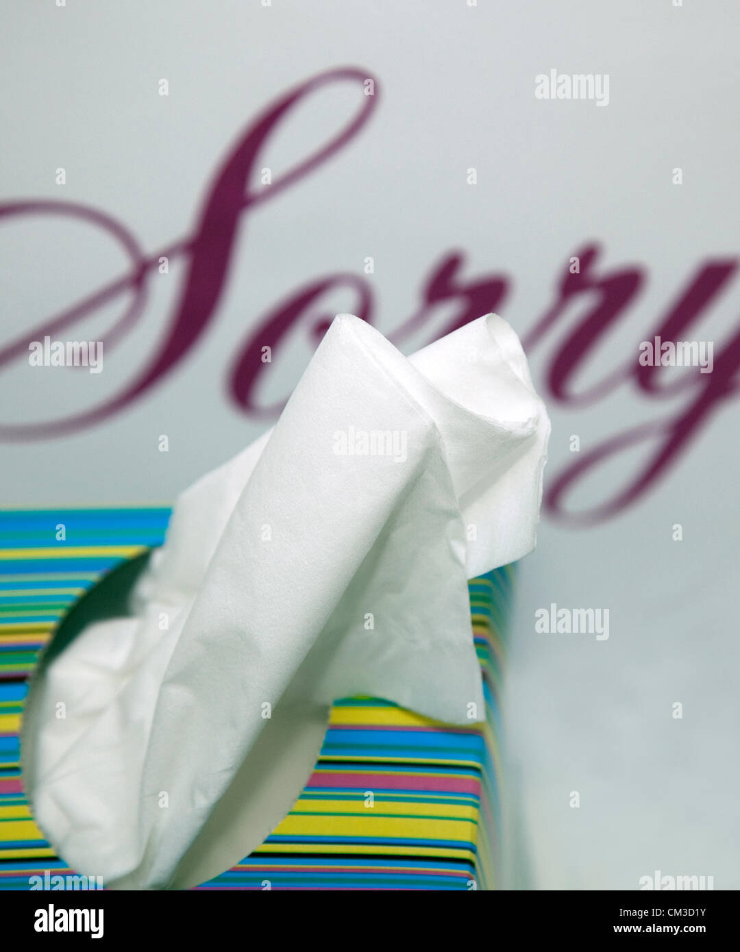 Everyone seems to be apologising these days. .. Word 'Sorry' with box of tissues. - Stock Image