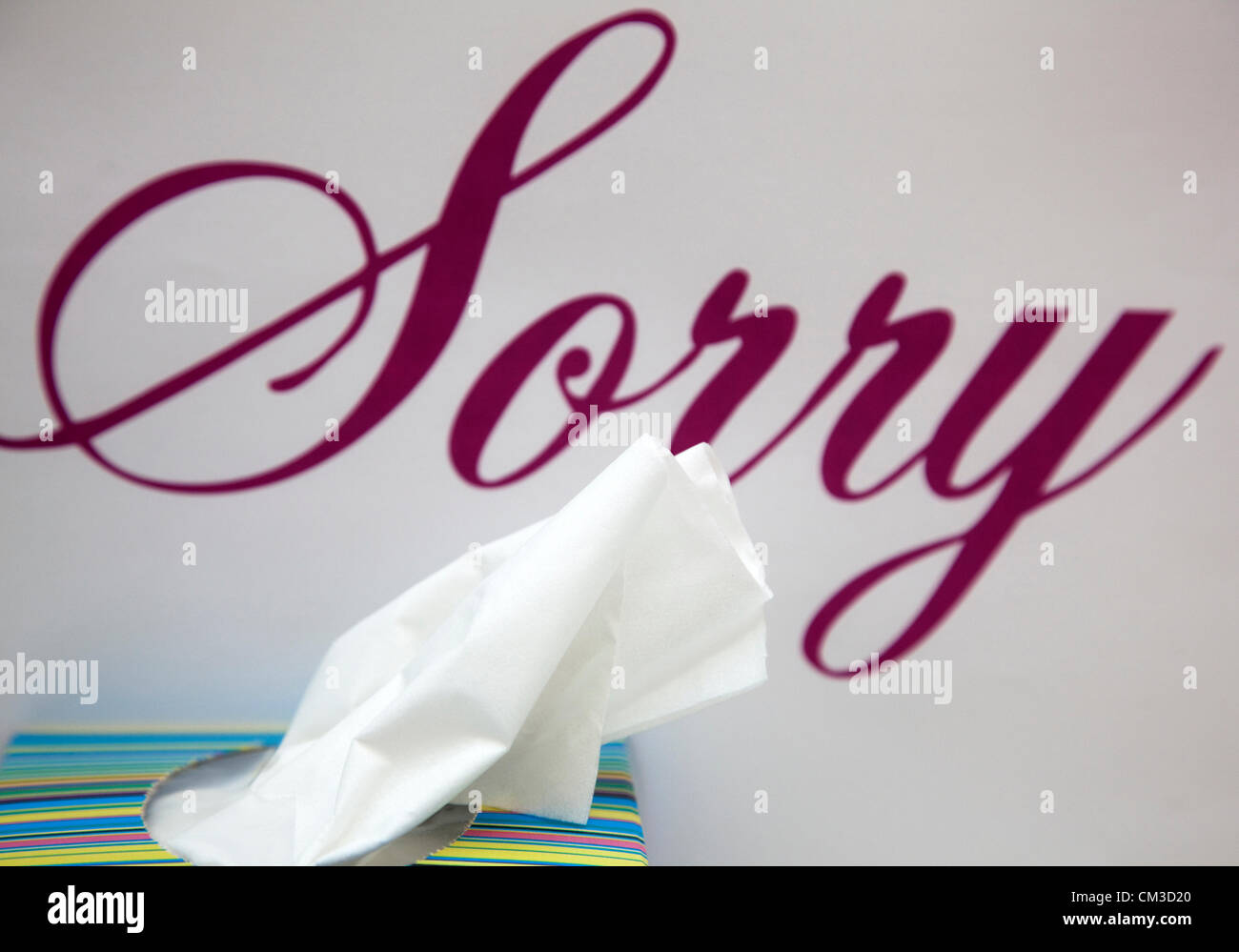 Everyone seems to be apologising these days...  Word 'Sorry' with box of tissues. - Stock Image