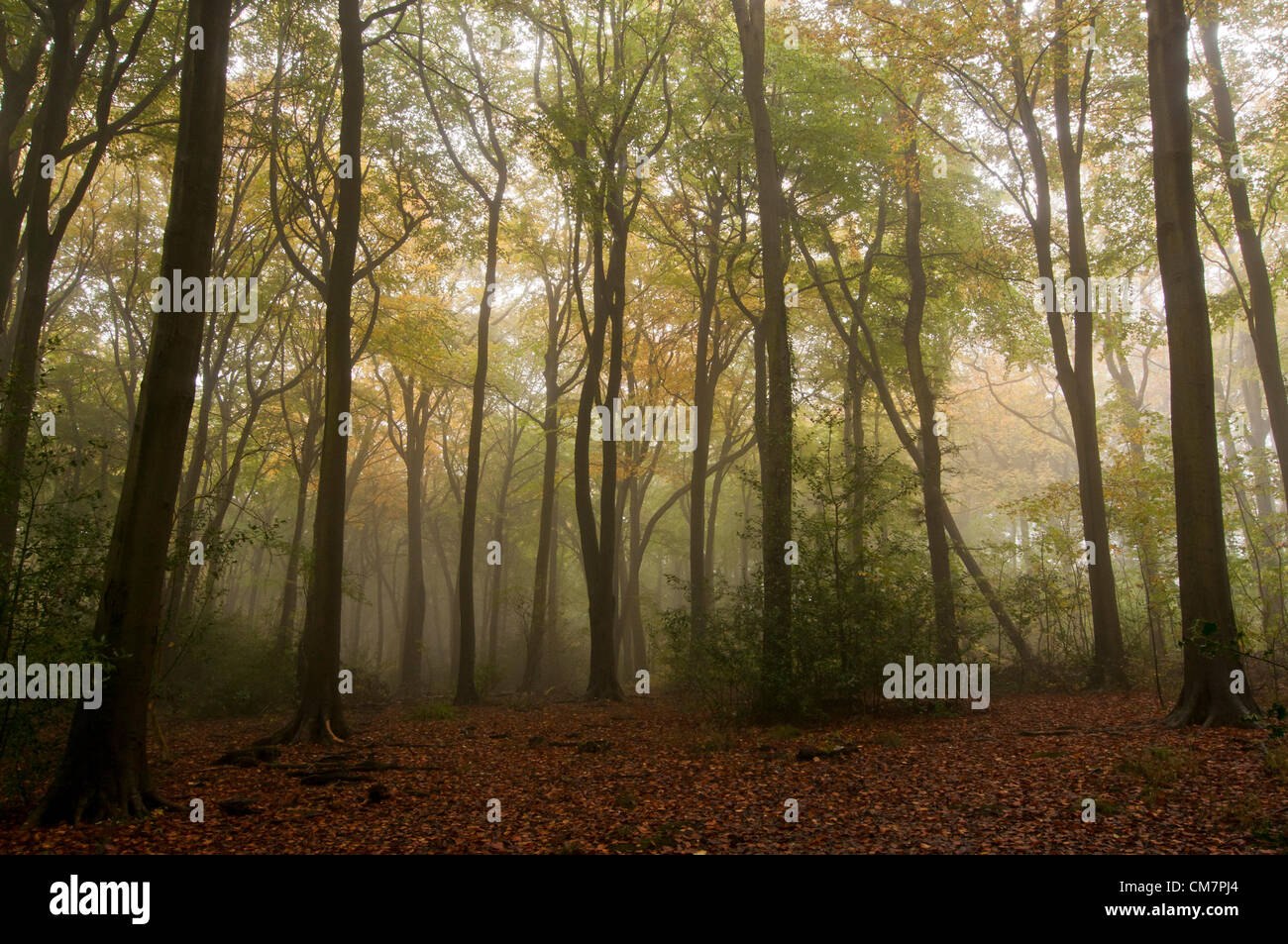 Chesham Autumn High Resolution Stock Photography And Images Alamy