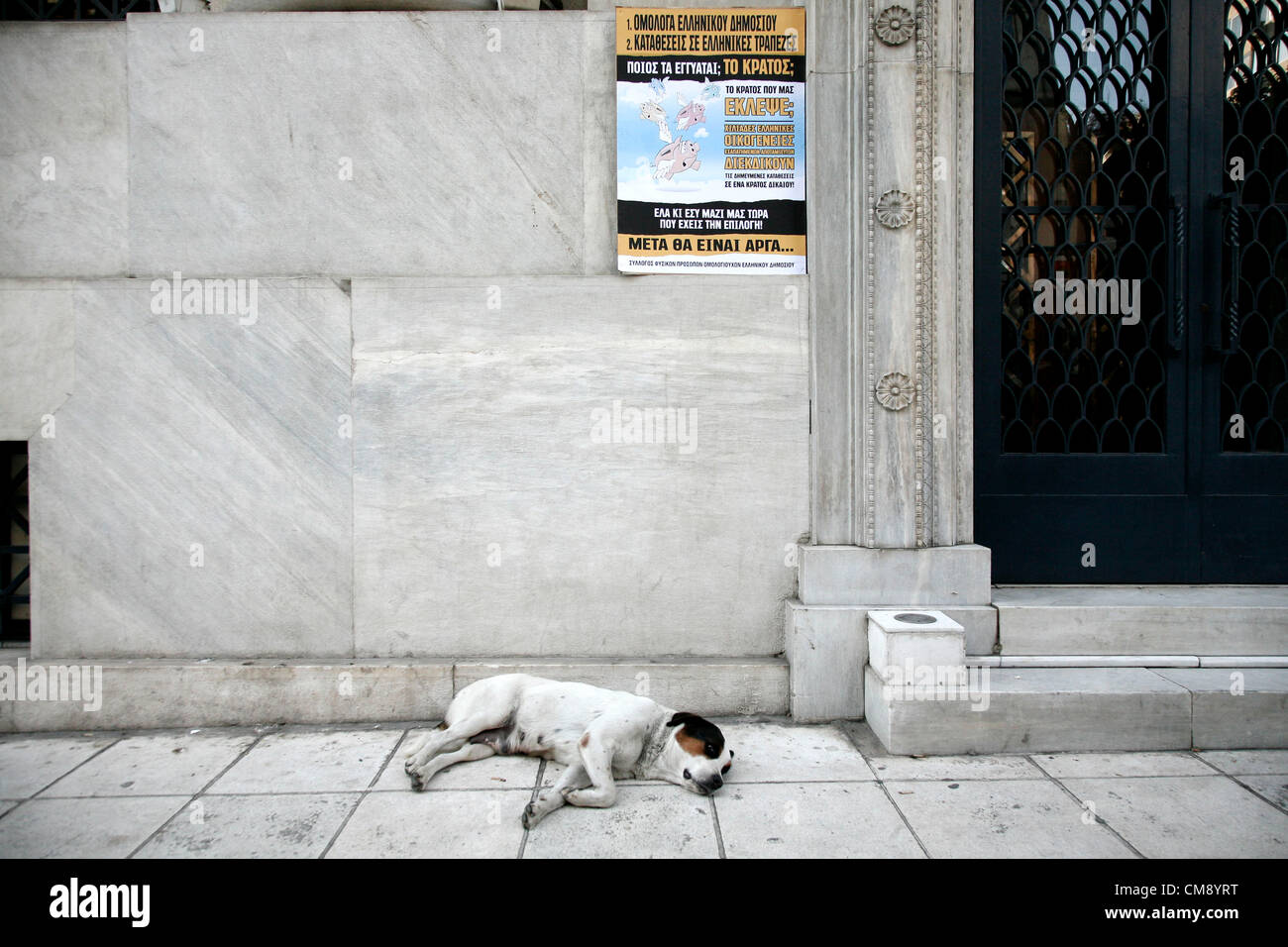 Thessaloniki, Greece. October 31, 2012. A dog sleep outside of the Bank of Greece department. Greek bondholders - Stock Image