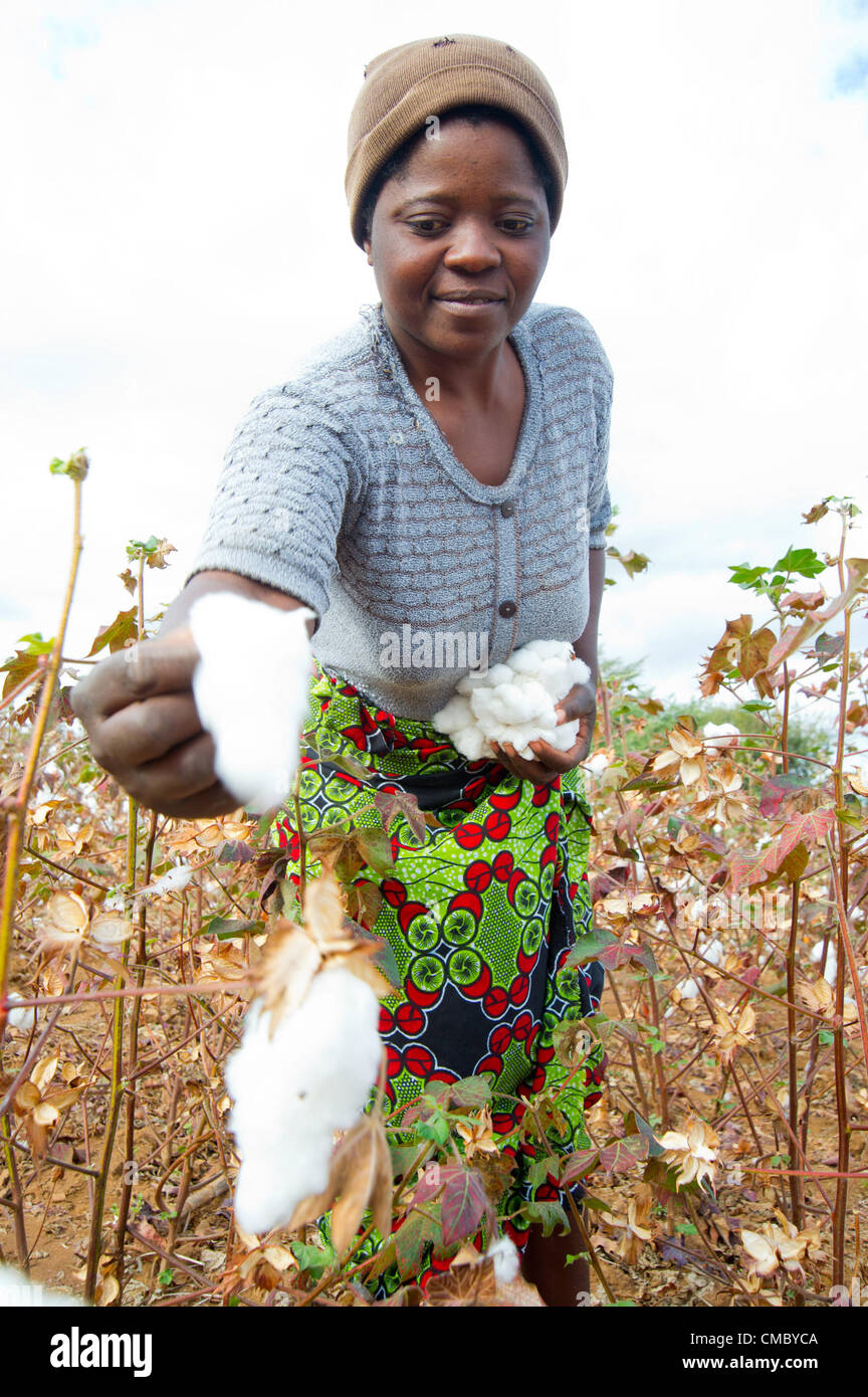 June 14, 2012 - Magarnehwe (Village, Zimbabwe - June 14, 2012, Rushinga, Zimbabwe -  Using loans taken from their - Stock Image