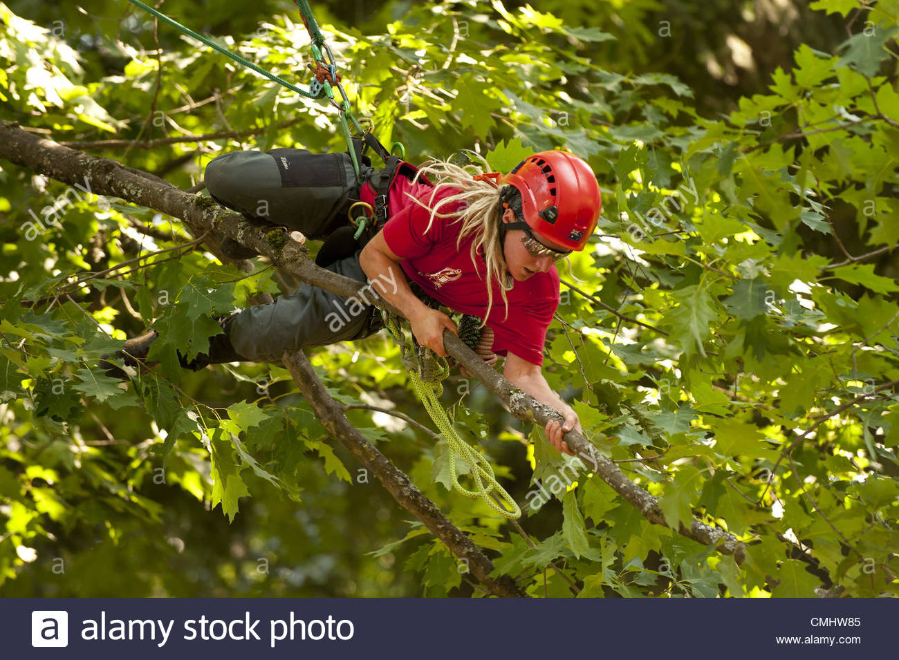 Aug. 12, 2012 - Portland, OR, USA - Sweden's Veronika Ericsson climbs onto a small limb to complete a task in - Stock Image