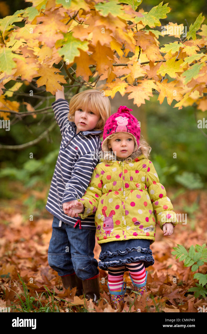 A three year old boy with his two year old sister amongst leaves at Westonbirt Arboretum, Gloucestershire (2 Nov - Stock Image