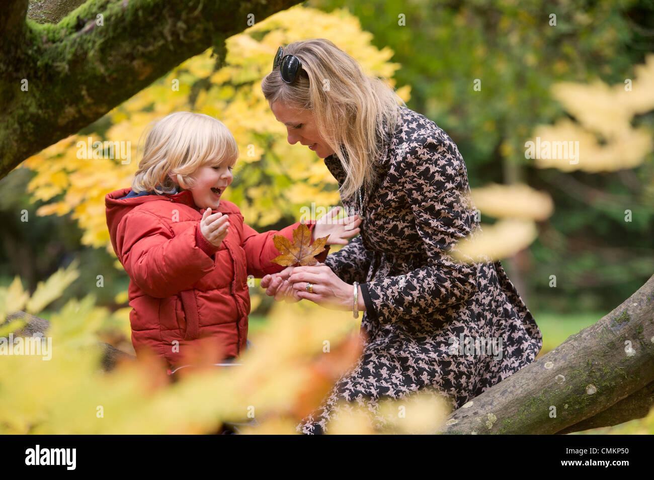 Autumn colour at Westonbirt Arboretum, Gloucestershire (2 Nov 2013). - A mother plays with leaves with her three - Stock Image