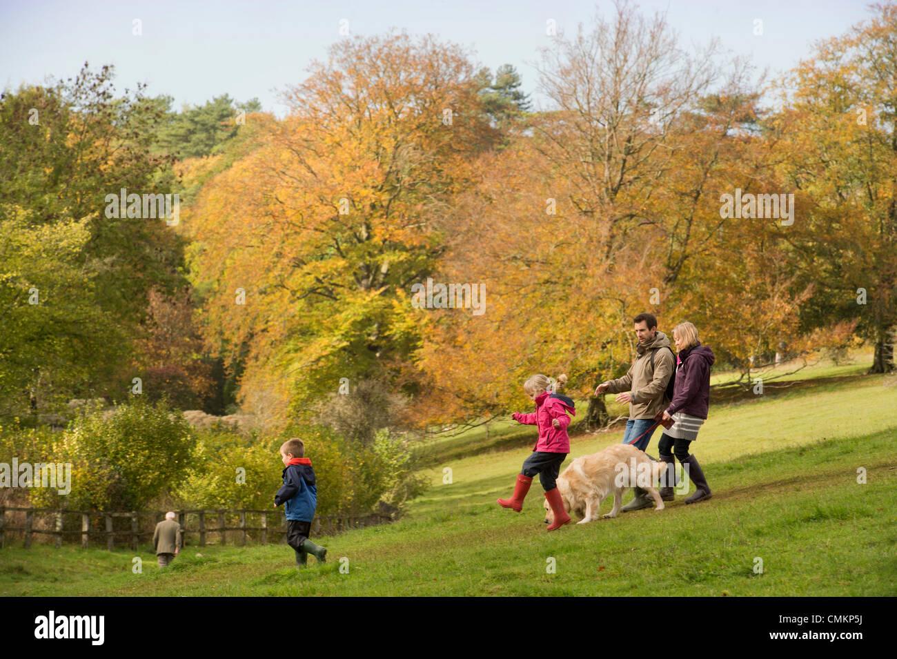 Autumn colour at Westonbirt Arboretum, Gloucestershire (2 Nov 2013). Credit:  Adrian Sherratt/Alamy Live News - Stock Image