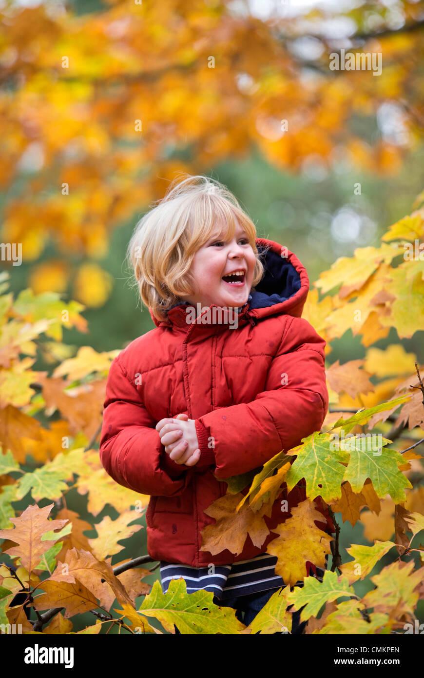 A three year old boy playing amongst the leaves at Westonbirt Arboretum Credit:  Adrian Sherratt/Alamy Live News - Stock Image