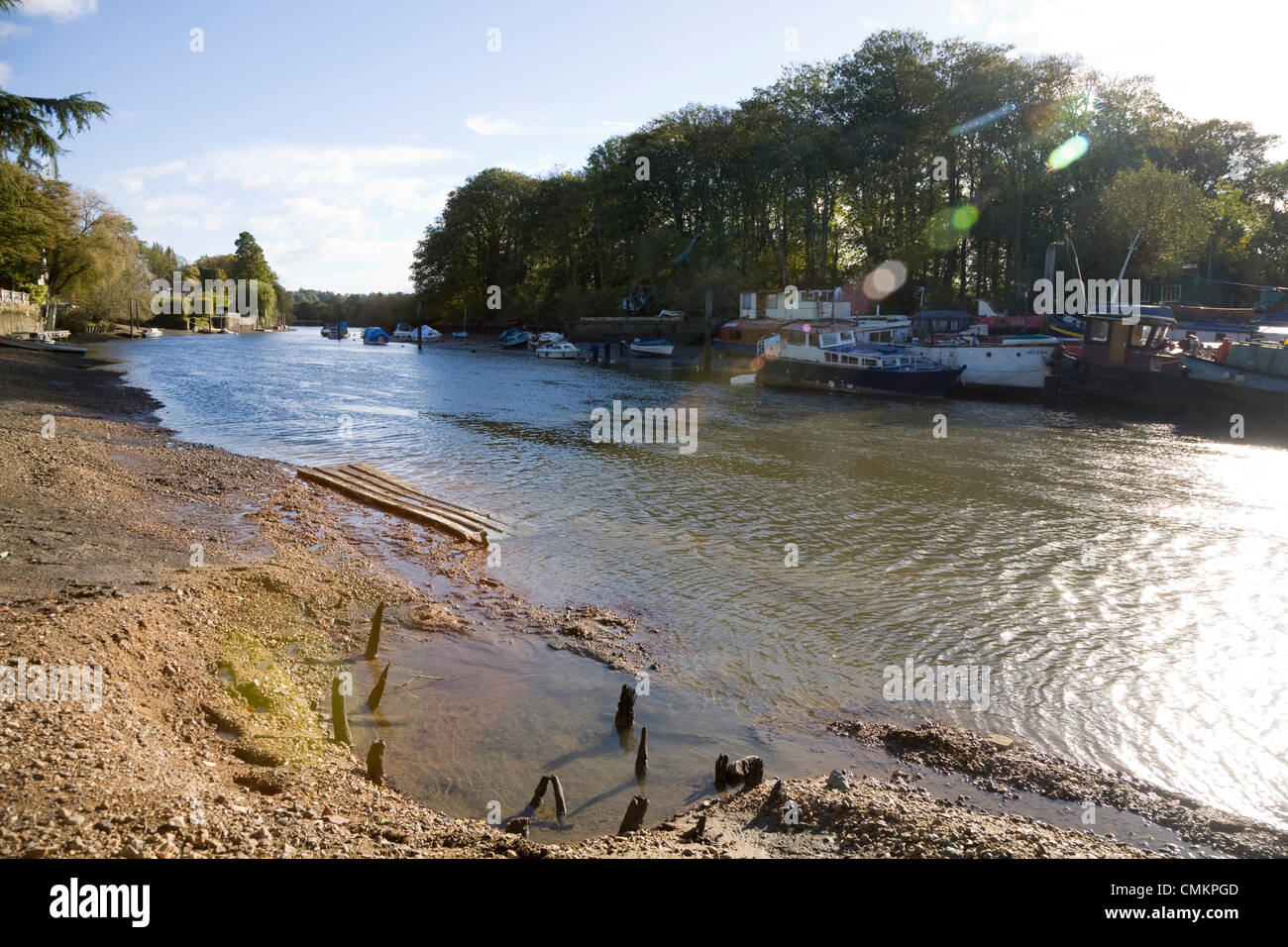 Twickenham, UK. Newly exposed river bed of the Thames at Twickenham, as a result of the RICHMOND LOCK AND WEIR DRAW Stock Photo