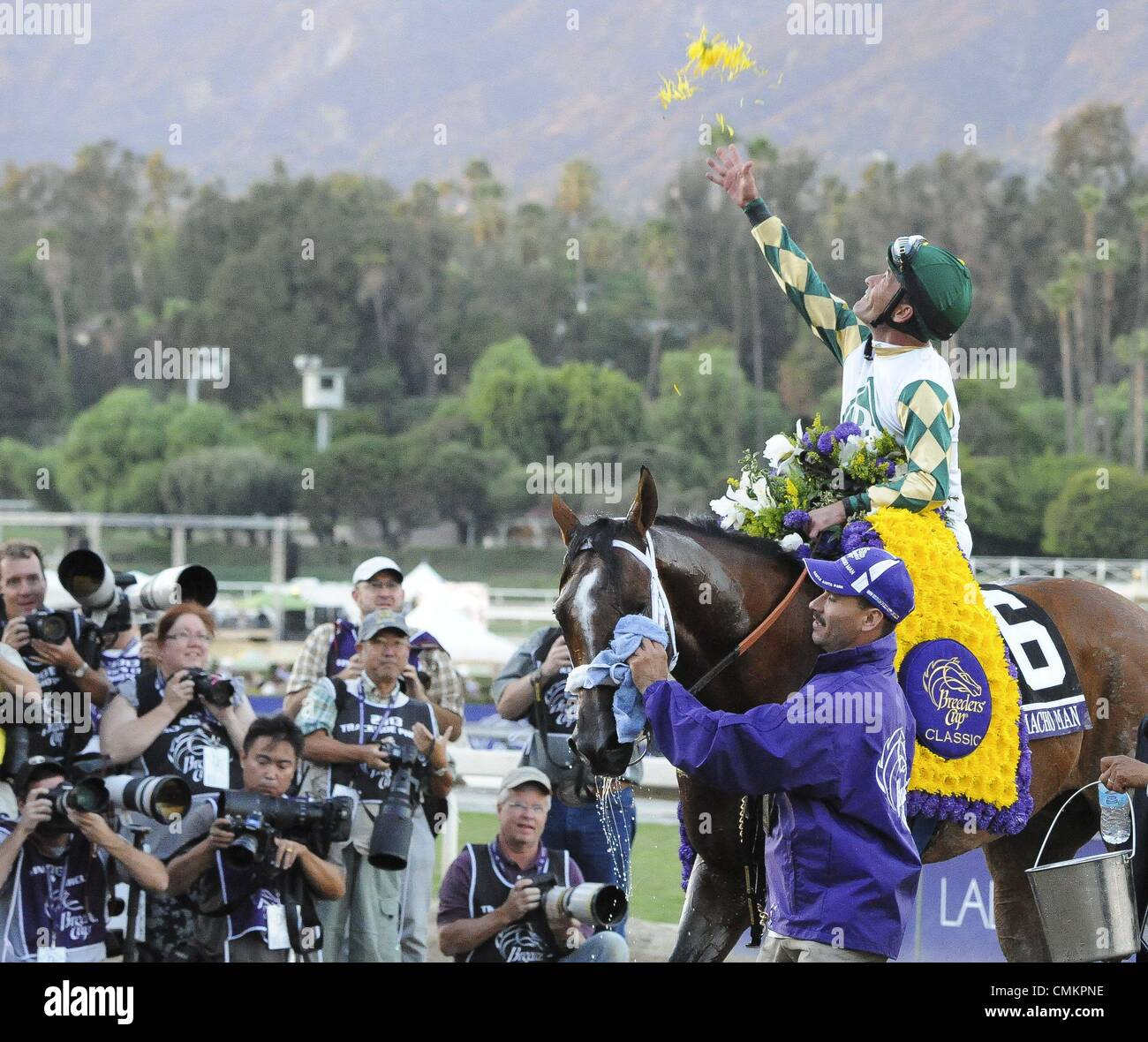 Arcadia, California, USA. 2nd Nov, 2013. Mucho Macho Man ridden by GARY STEVENS, and trained by Kathy Ritvo, wins - Stock Image