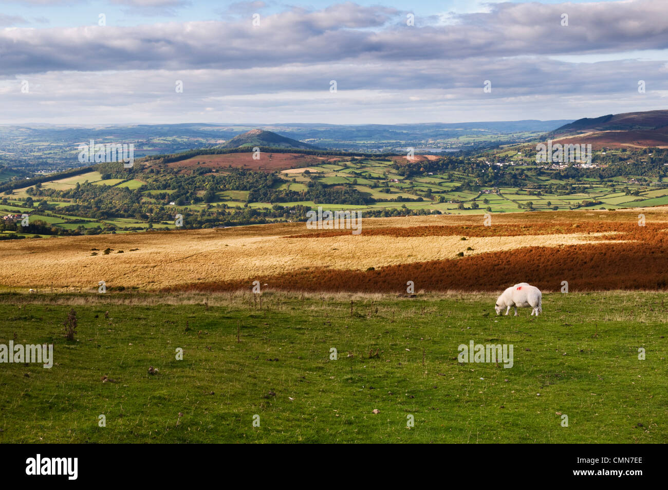 View over the Usk valley taken from Llangynidr moors on the B4560 Brecon Beacons national Park, Mid Wales in Autumn - Stock Image