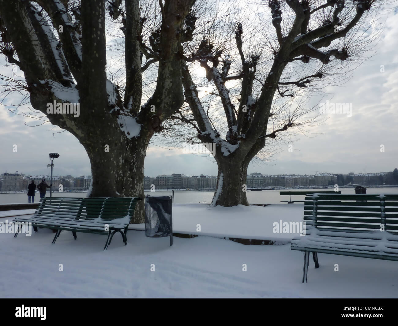 Park with trees and benches next to the lake of Geneva, by winter, Switzerland - Stock Image