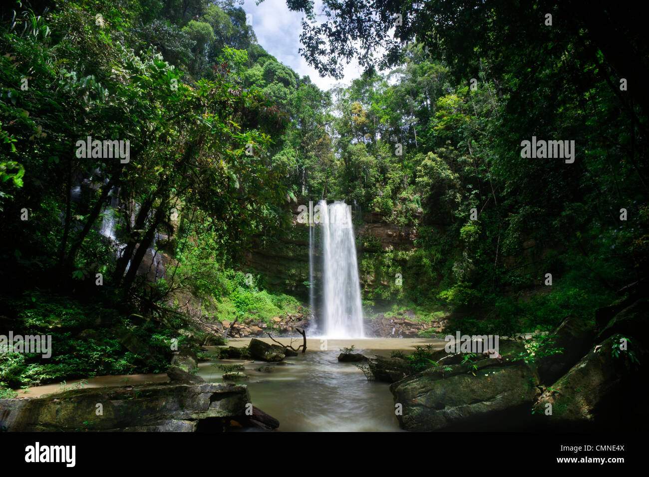 Ginseng Falls on a tributary of the Maliau River. Centre of Maliau Basin - Sabah's 'Lost World' - Borneo. - Stock Image