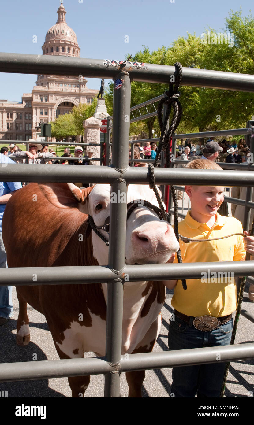 Young boy shows off his champion grand champion steer in front of Texas Capitol building - Stock Image