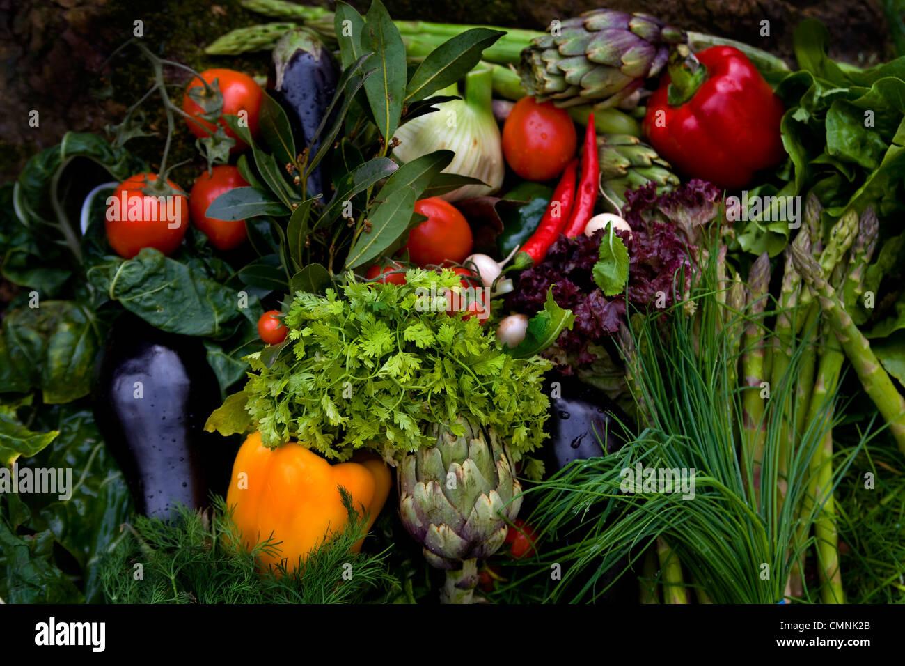 A pile of fresh garden vegetables Stock Photo