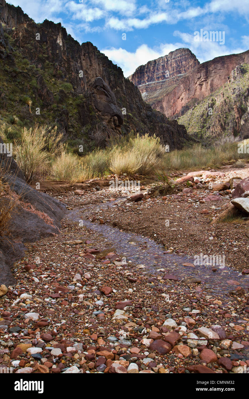 View toward the South Rim up Monument Creek from near the Colorado River, Grand Canyon, AZ, February. - Stock Image