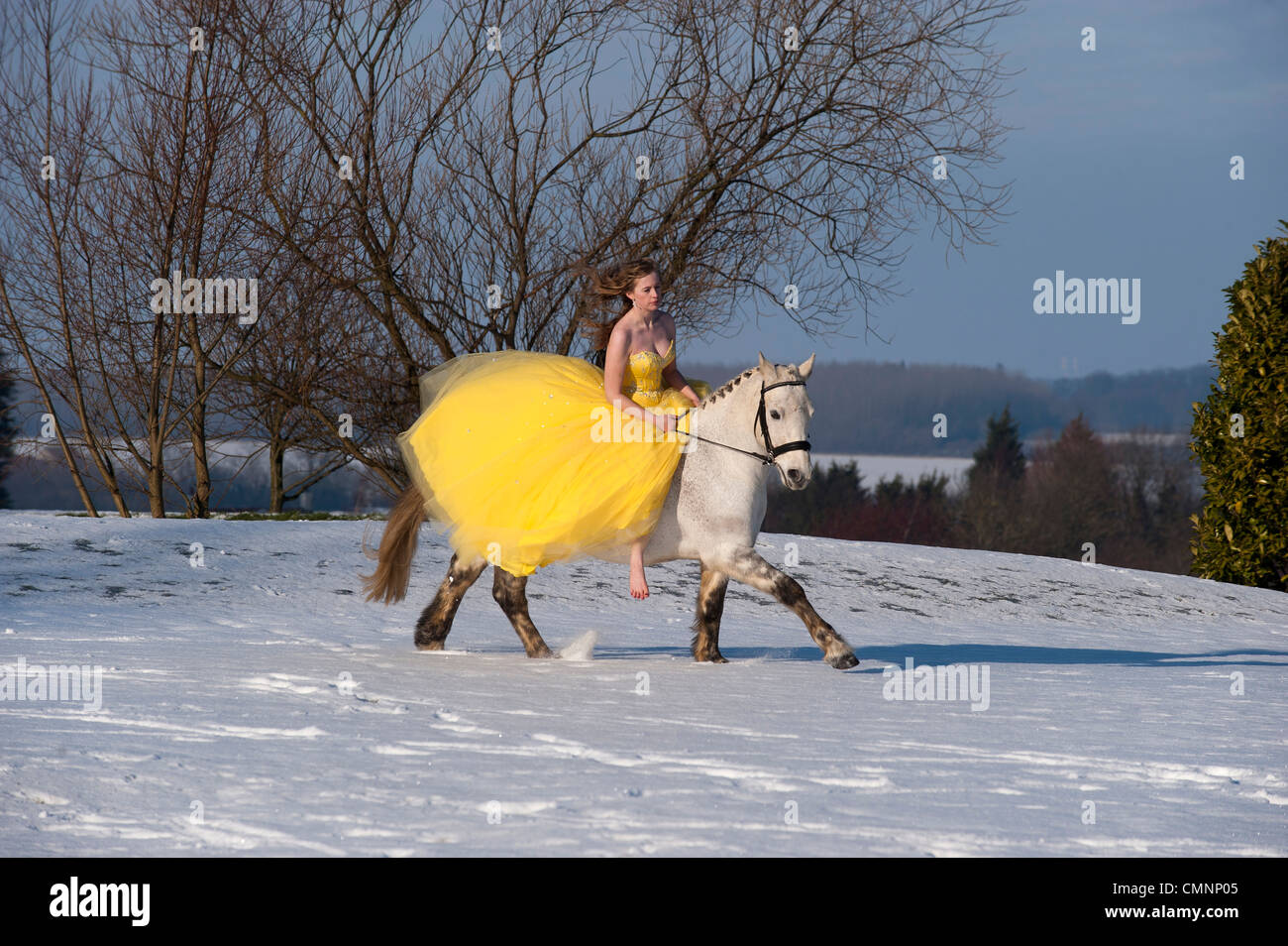 A young woman rides a white horse across a snowy landscape wearing a yellow prom dress. - Stock Image