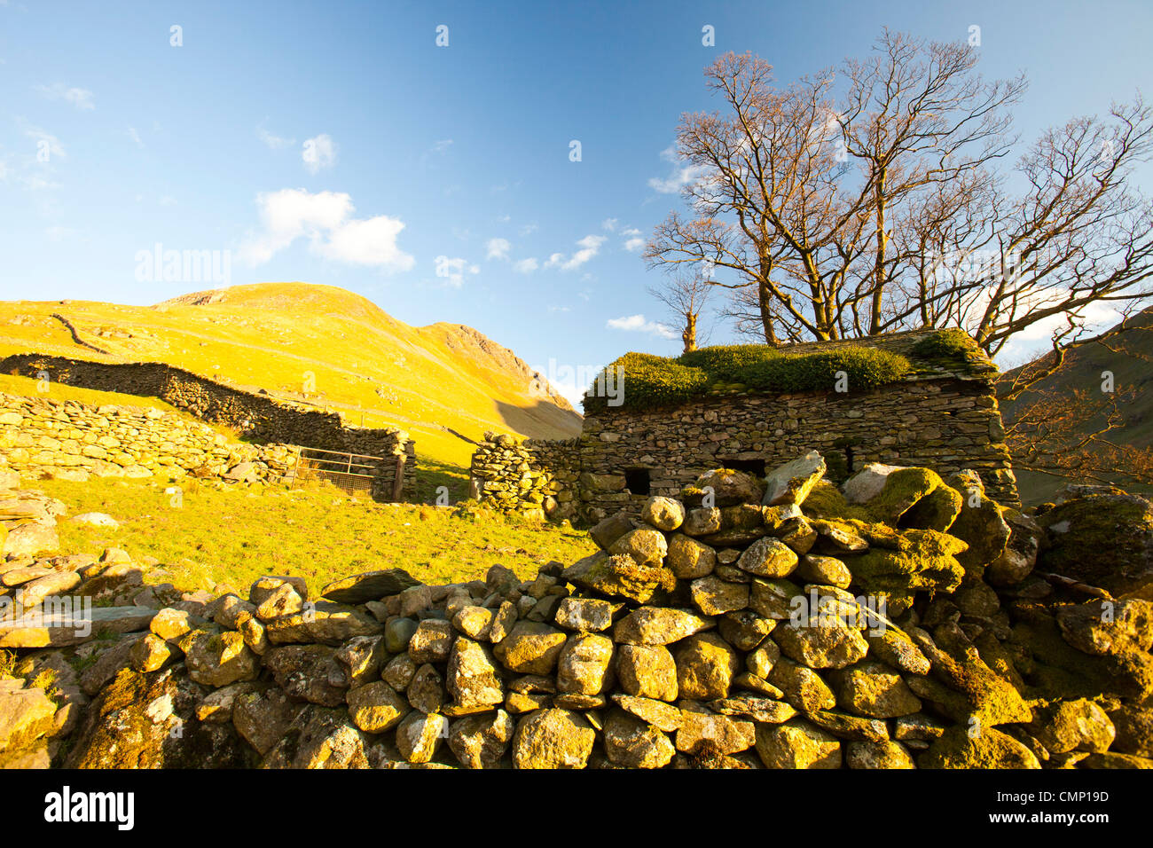 An old barn above Hartsop in the Lake District, UK. - Stock Image