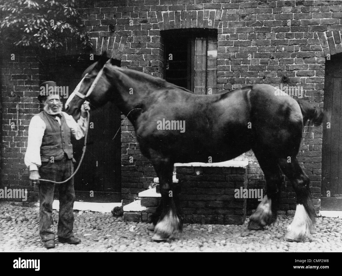 Henry Roden, 'The Forge', Penn, late 19th cent. Mr Henry Roden, the Penn blacksmith with a horse at the - Stock Image