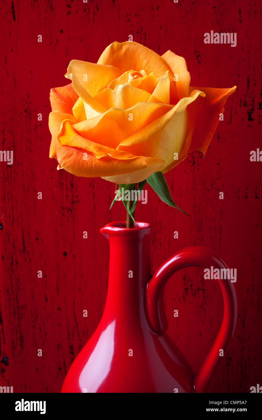 Orange rose in red pitcher against red wooden wall - Stock Image