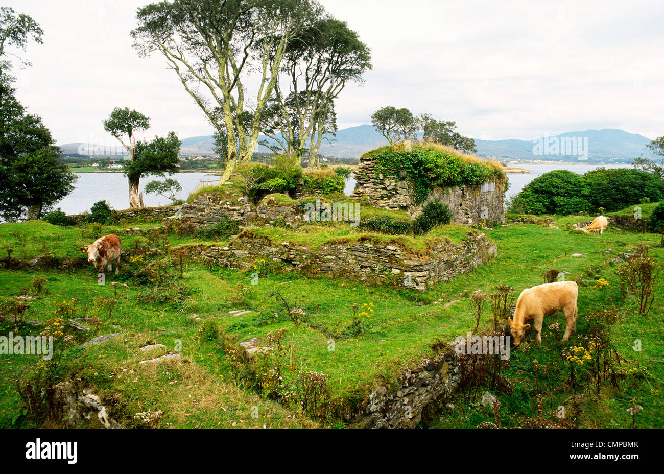 Dunboy Castle ruins on the south of Beara Peninsula, County Cork, Ireland. Stronghold of Gaelic clan leader O'Sullivan - Stock Image