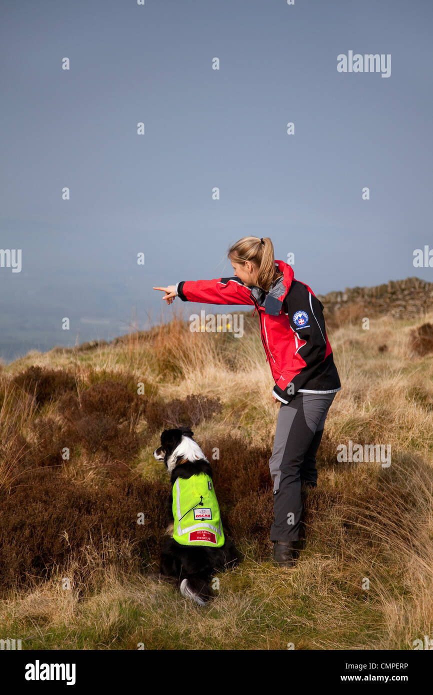 Search & Rescue _ The Bowland Pennine Mountain Rescue Team dog & handler, Chipping Hill, Lancashire, UK - Stock Image