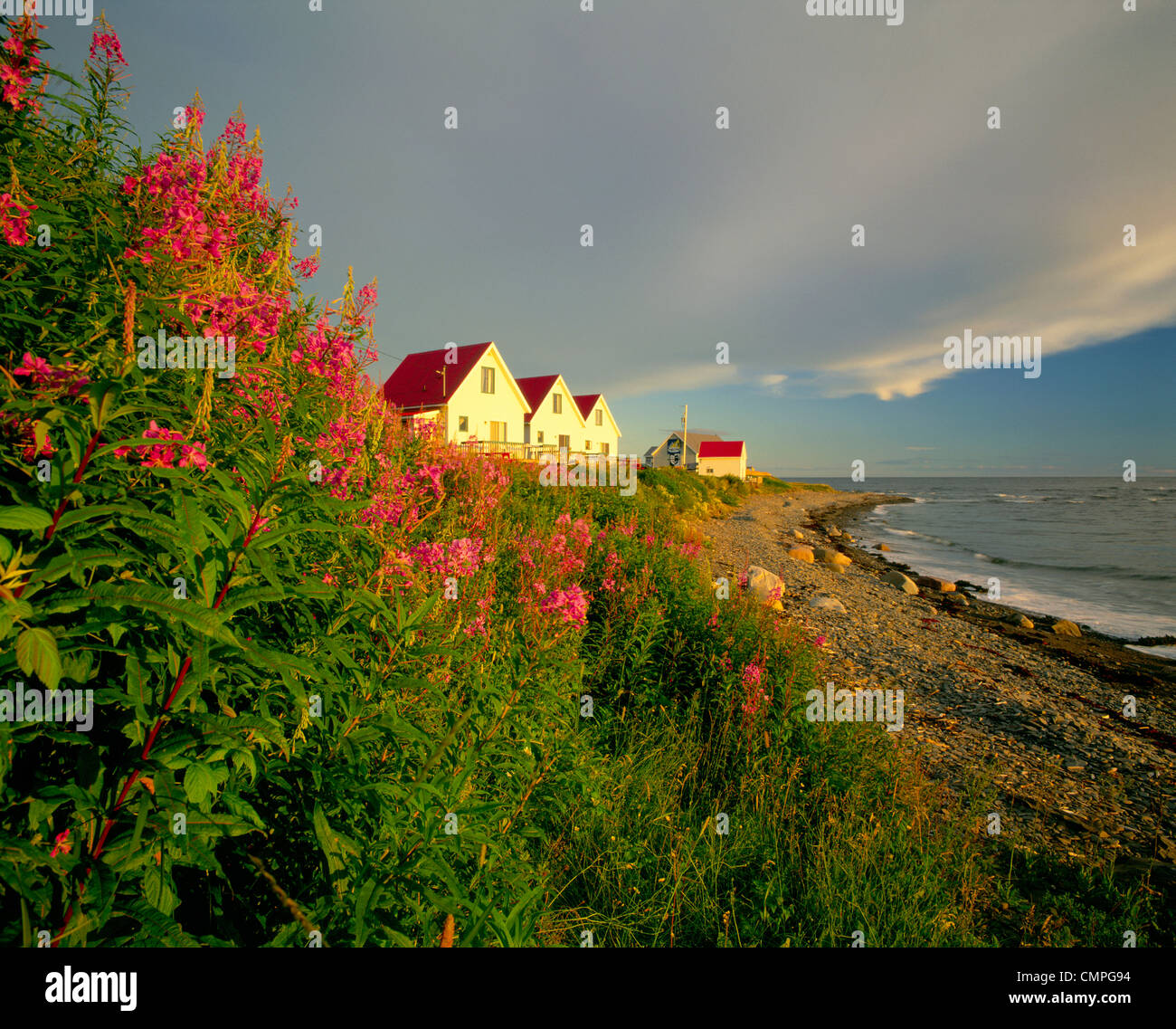Cottages on St Lawrence River, Petit Vallee, Gaspesie, Quebec - Stock Image