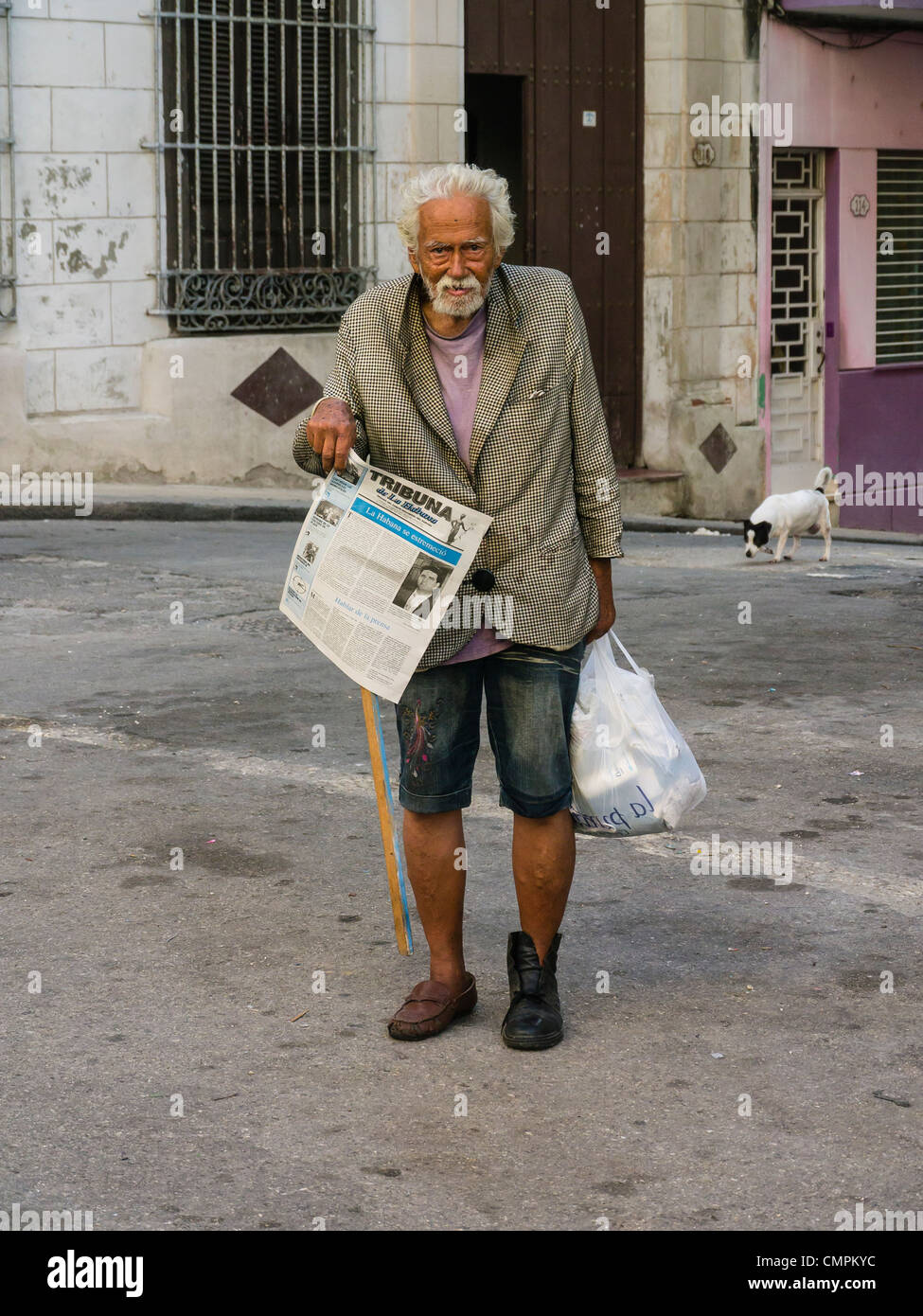 An elderly transient Cuban male walks the streets of the Havana Vieja section of Havana, Cuba with a dog in the - Stock Image