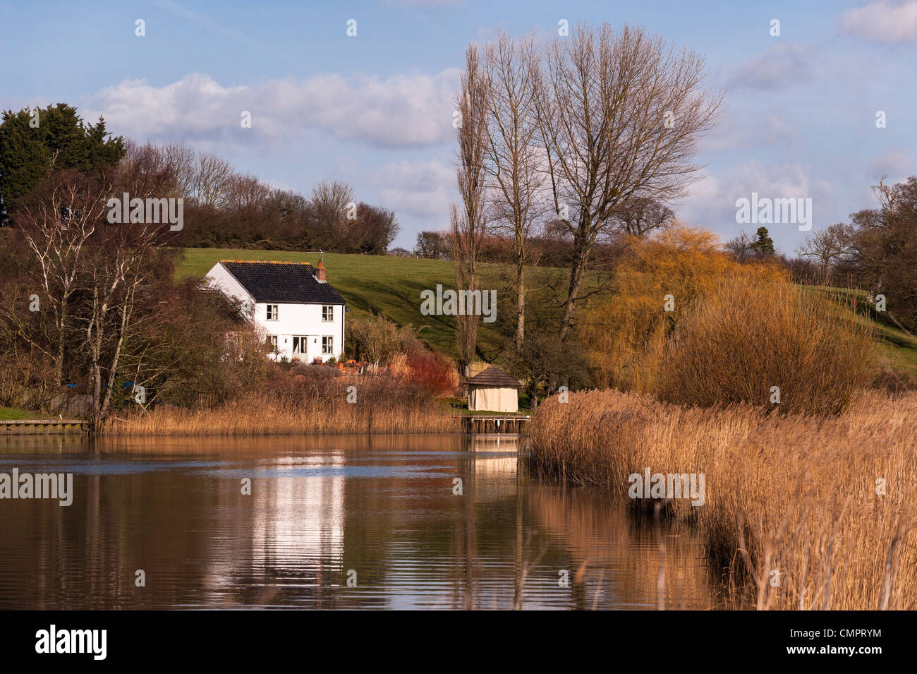 A cottage in gillingham , Norfolk viewed from the marsh trail walk on the river Waveney in Beccles , Suffolk , England Stock Photo