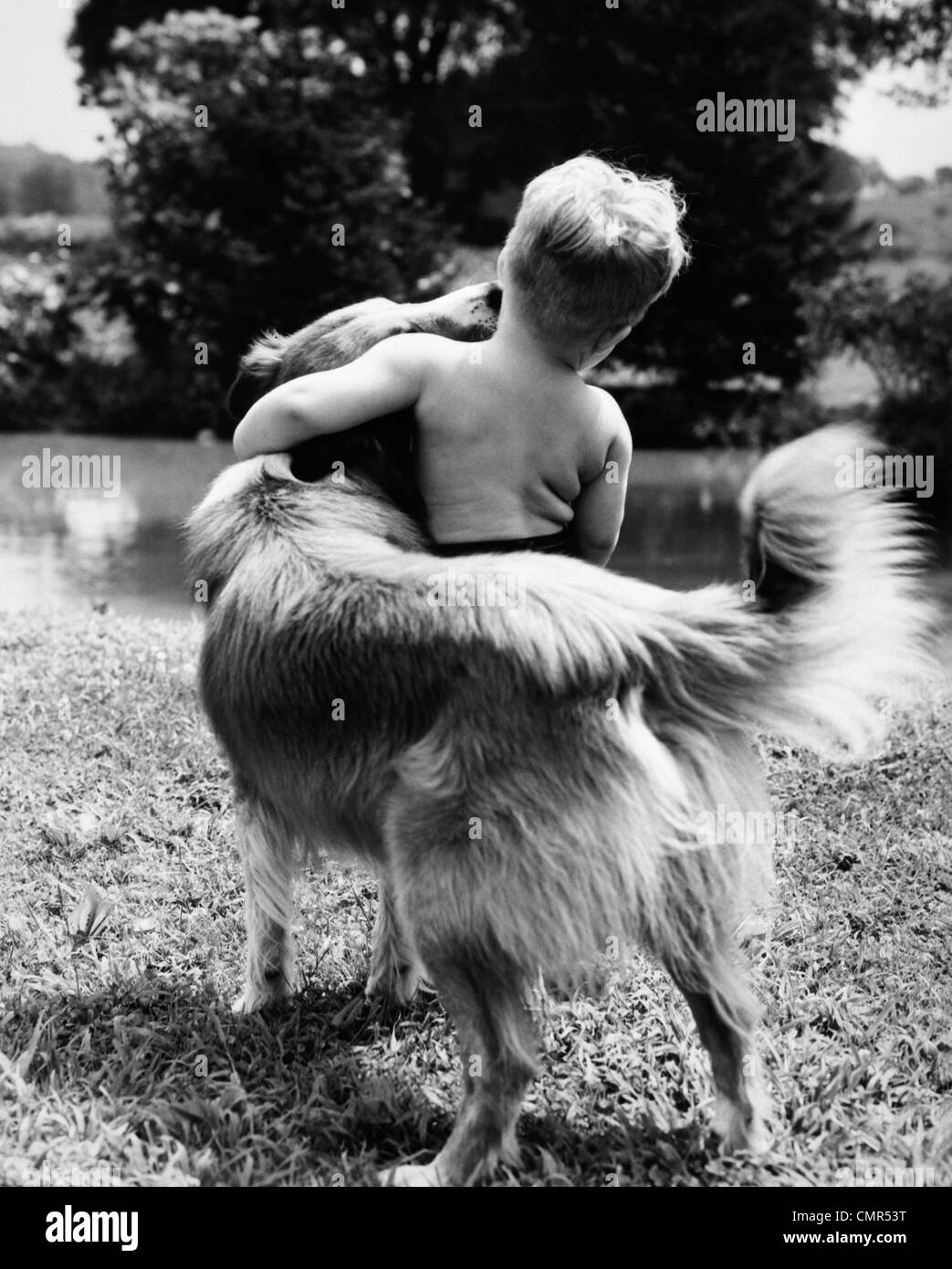 1940s 1950s 1960s BACK VIEW OF BOY AND DOG HUGGING - Stock Image