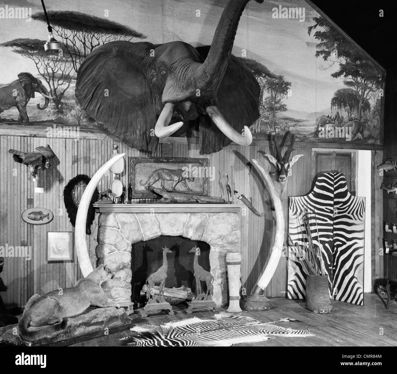 1940s 1950s ROOM WITH BIG GAME TROPHIES MOUNTED AROUND A FIREPLACE - Stock Image