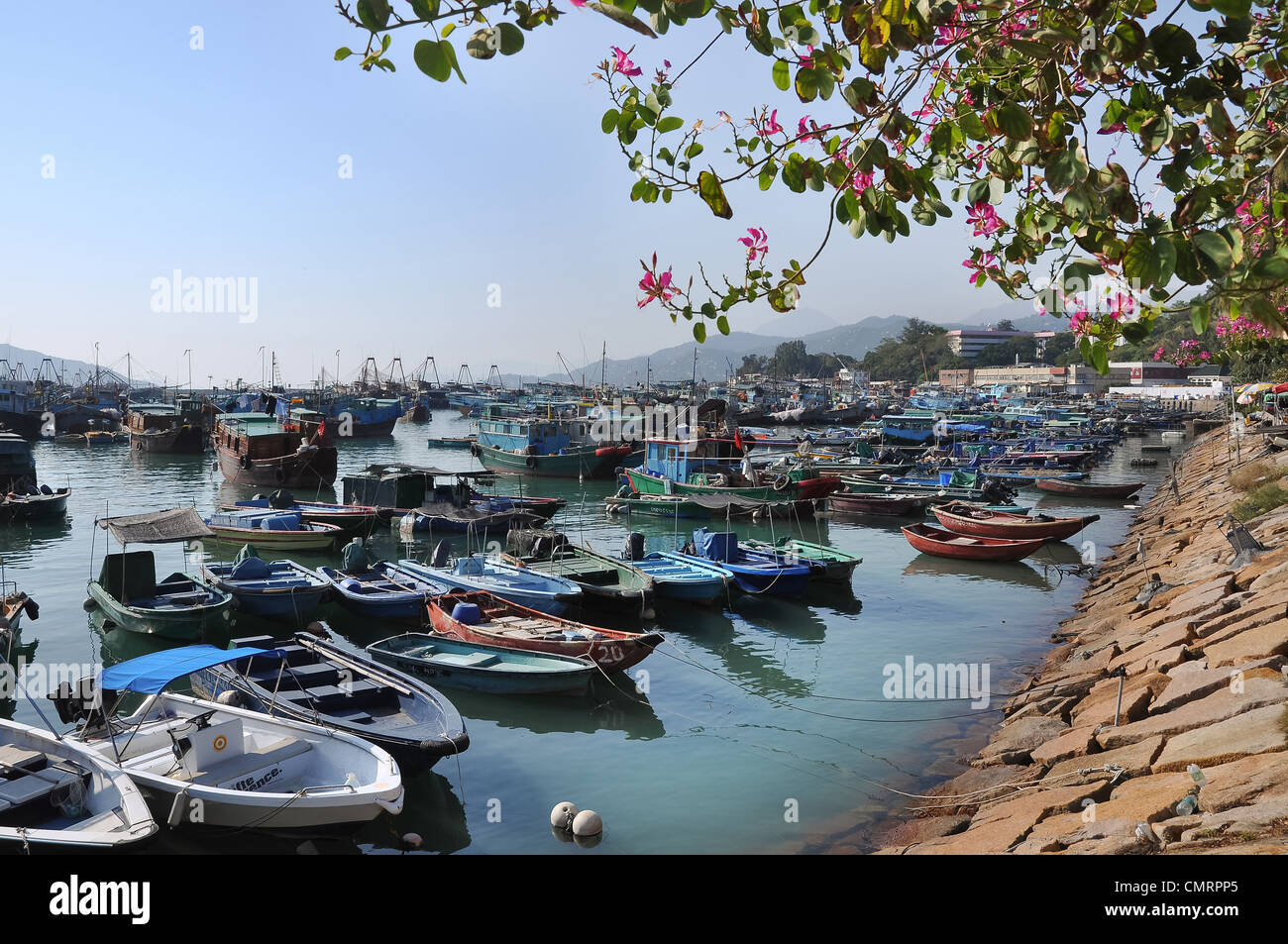 Cheung Chau harbour, Hong Kong. One of the most popular of Hong Kong's outlying islands. - Stock Image