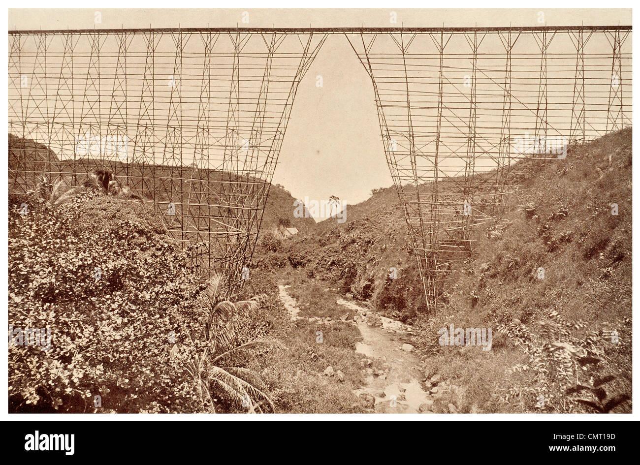 1924 Sugar Cane Flume North of Hilo, Hawaii - Stock Image