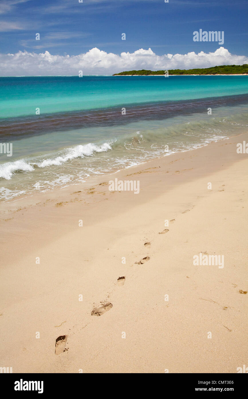 Footprints in sand on Natadola Beach, Coral Coast, Viti Levu, Fiji, South Pacific - Stock Image