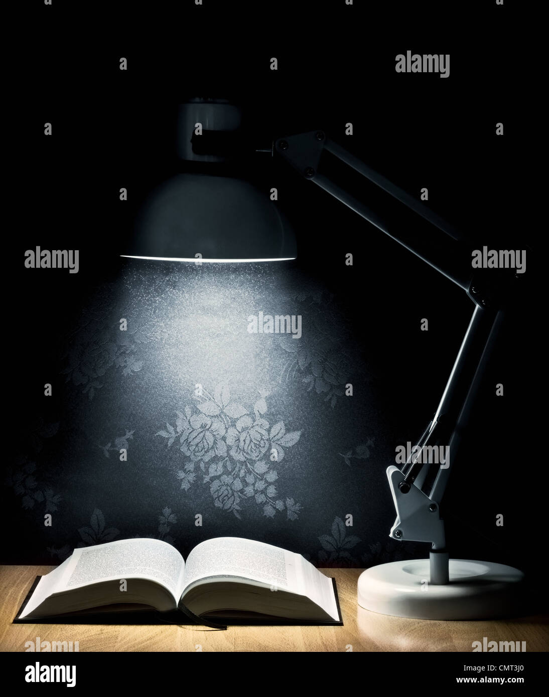 Lamp that illuminates an open book - Stock Image