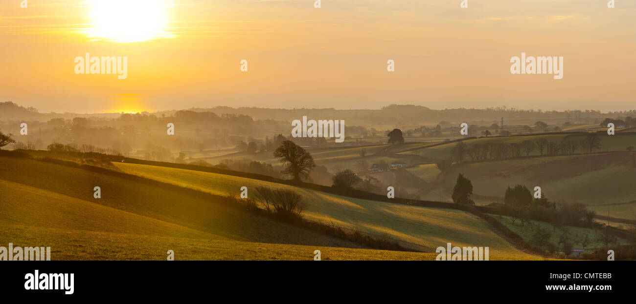 Fields near Kenton, Devon, England, UK, Europe - Stock Image