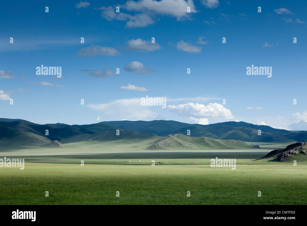 landscape of beautiful steppe in Mongolia - Stock Image