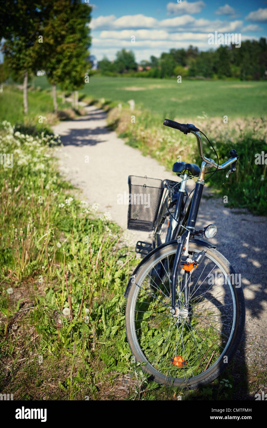 Bicycle parked on grass - Stock Image