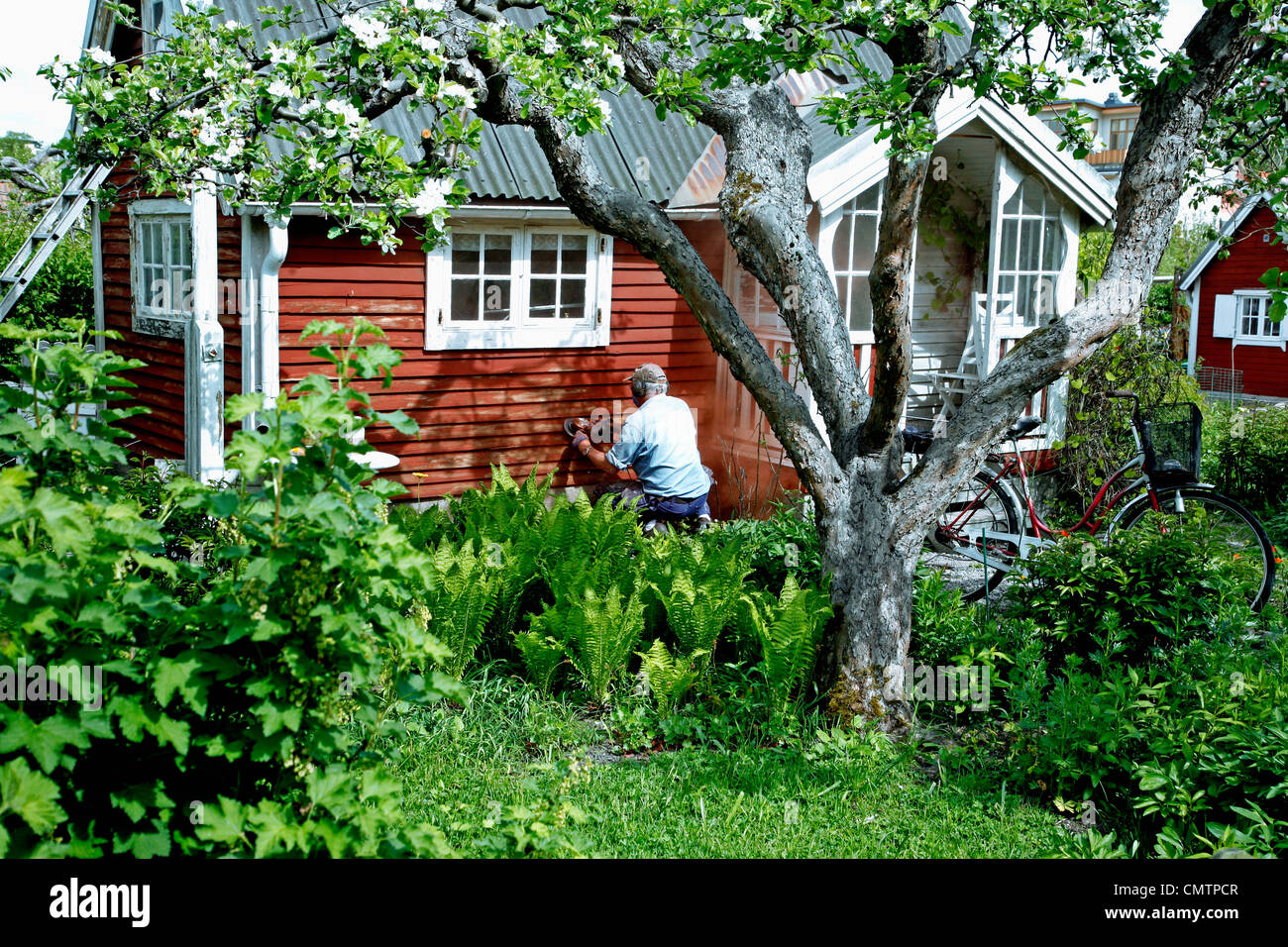 Man painting summer cottage Stock Photo