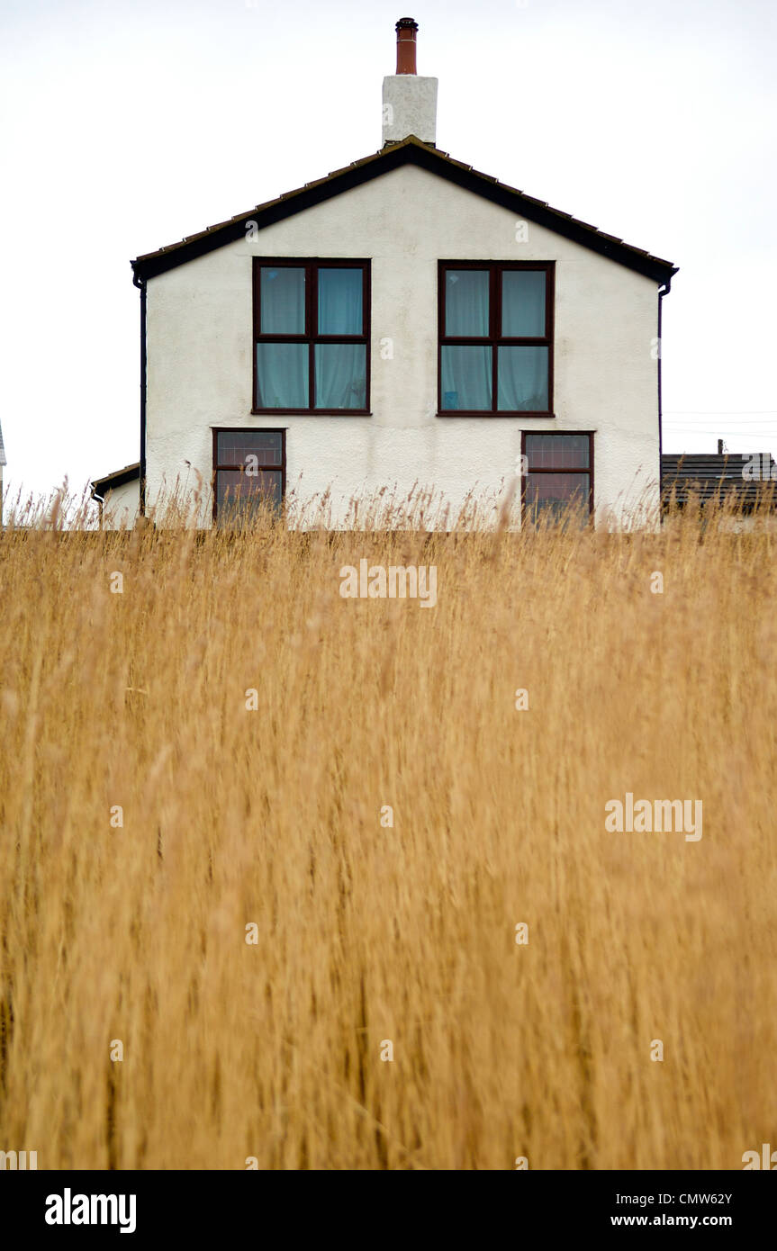 Symmetrical house in front of field of long grass & Symmetrical house in front of field of long grass Stock Photo ...