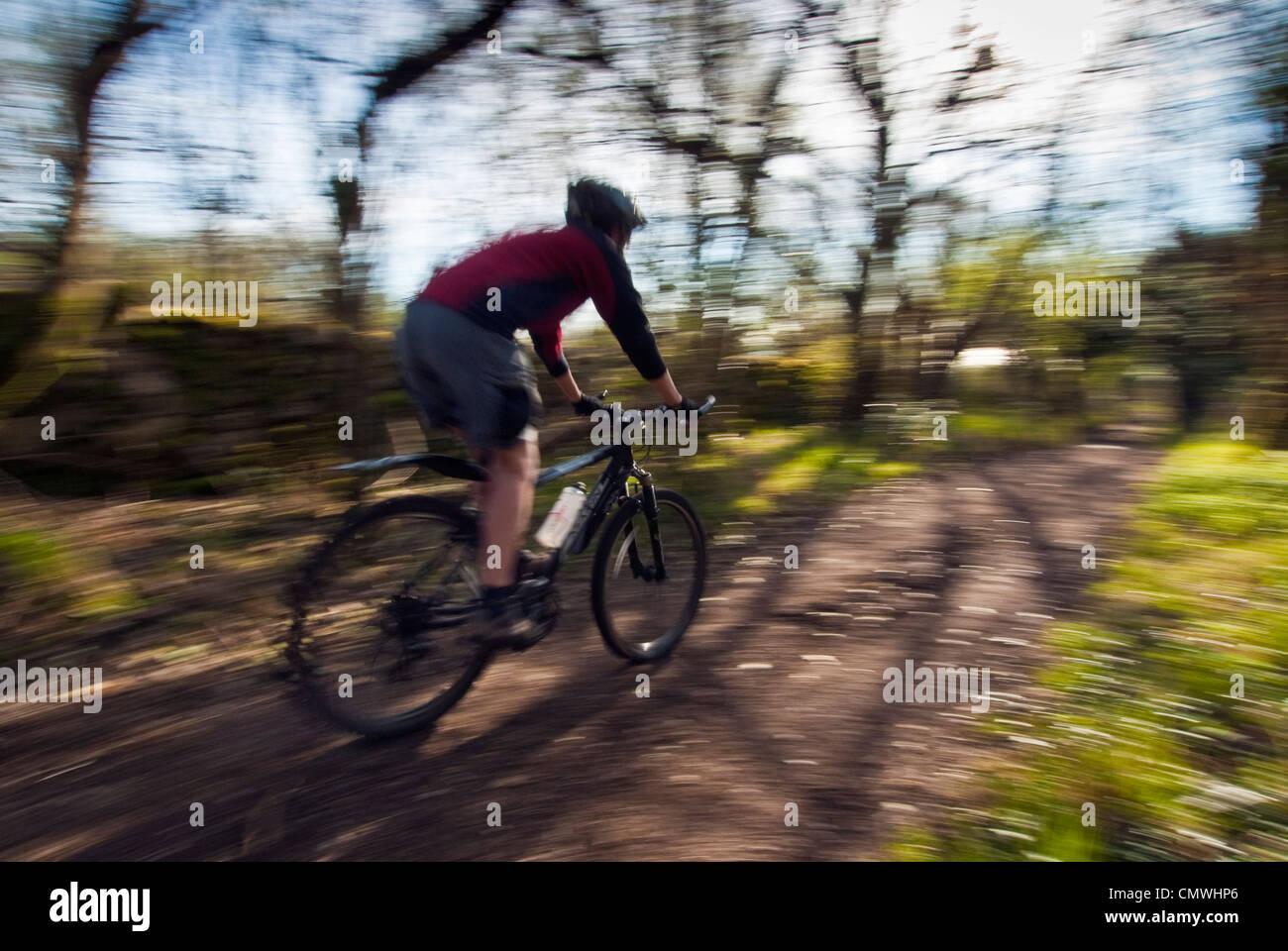 Mountain biker on Occupation Lane, Warton Crag, Lancashire, UK - Stock Image