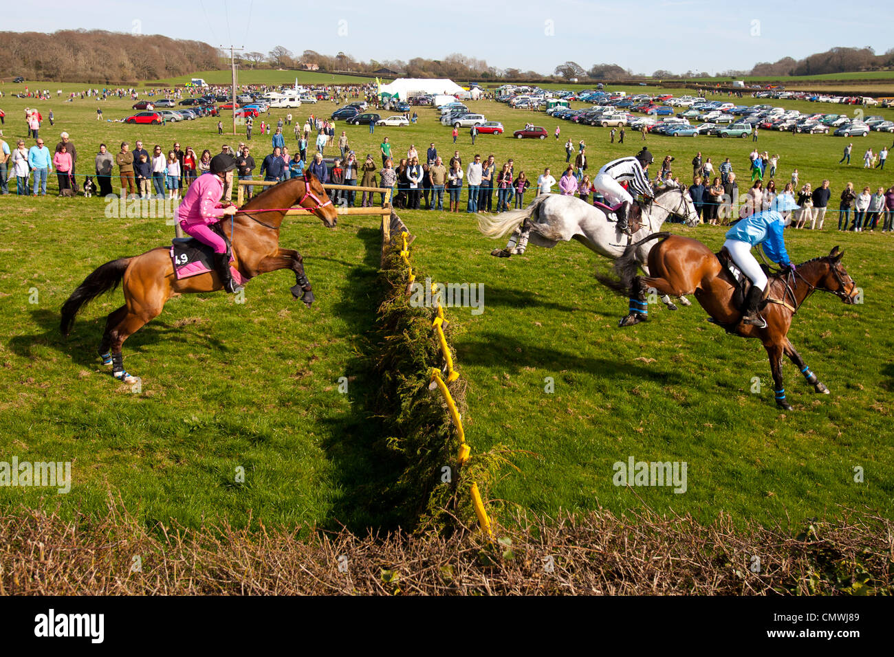 Isle of Wight England UK, Ryde, Apse Heath, Scurry, Grand National Stock Photo