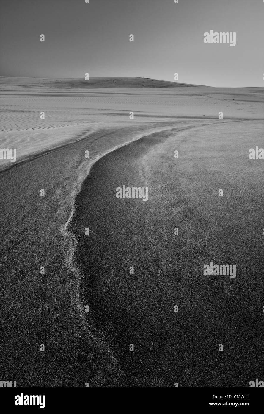 Dunes in Slowinski National Park. Black and white - Stock Image