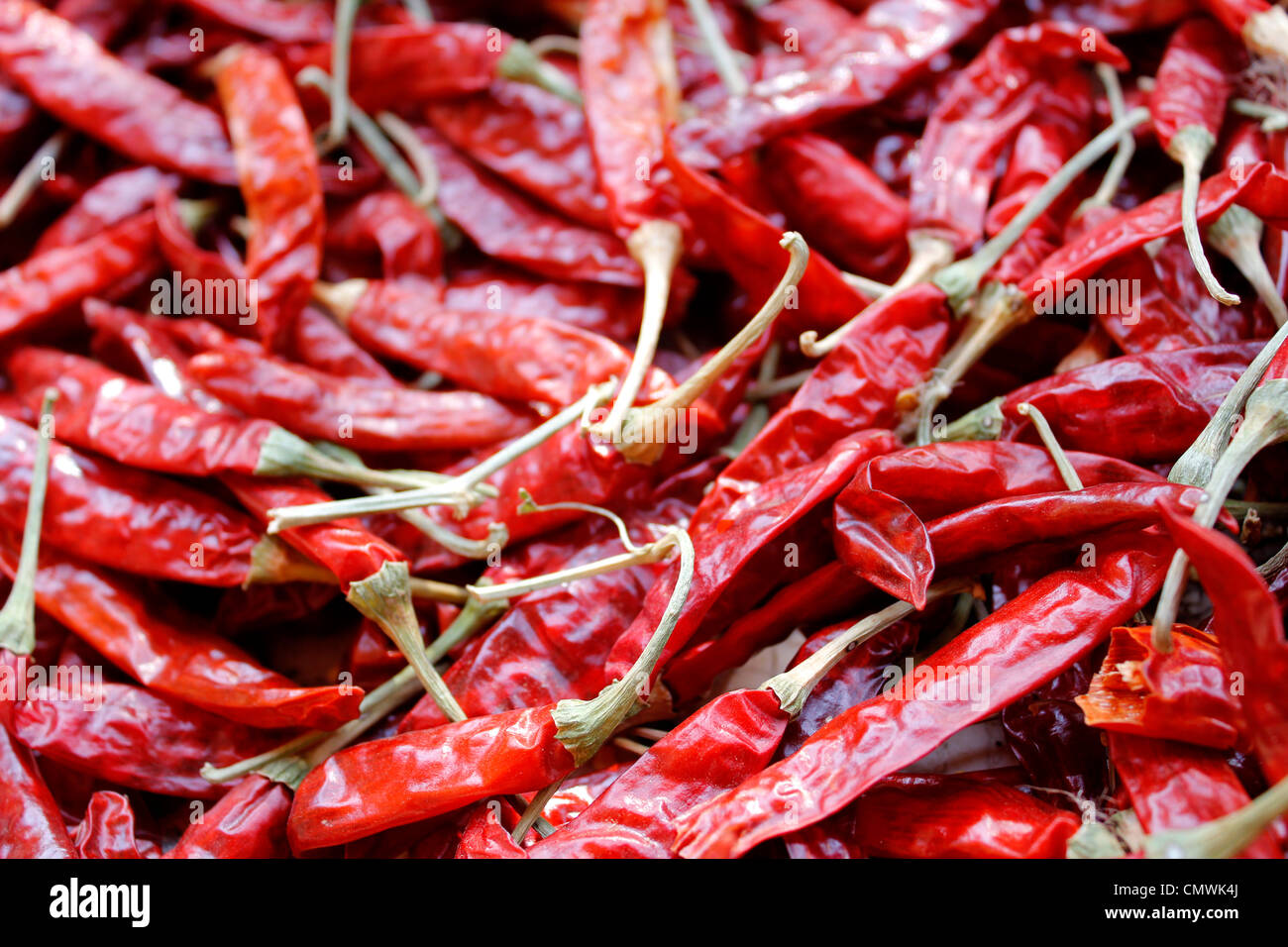 red dried chilli - Stock Image