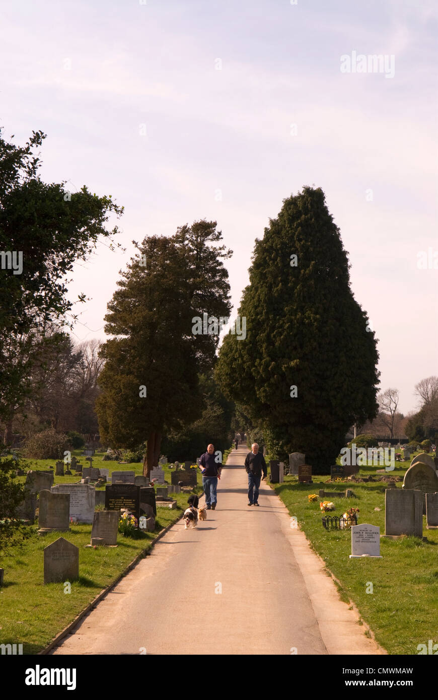 People walking their dogs along pathway at Ann's Hill Cemetery, Gosport, Hampshire, UK. Stock Photo