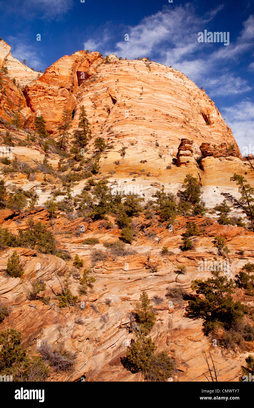 Rock Formations, Zion National Park, Utah USA - Stock Image